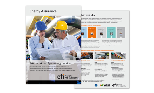 Efi Design Project Insert Leaflet